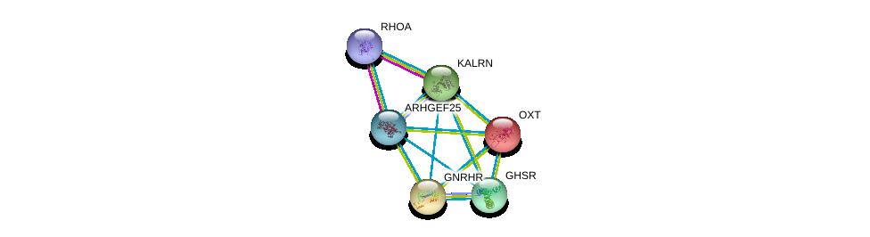 http://string-db.org/version_10/api/image/networkList?limit=0&targetmode=proteins&caller_identity=gene_cards&network_flavor=evidence&identifiers=9606.ENSP00000335560%0d%0a9606.ENSP00000400175%0d%0a9606.ENSP00000217386%0d%0a9606.ENSP00000226413%0d%0a9606.ENSP00000240874%0d%0a9606.ENSP00000241256%0d%0a