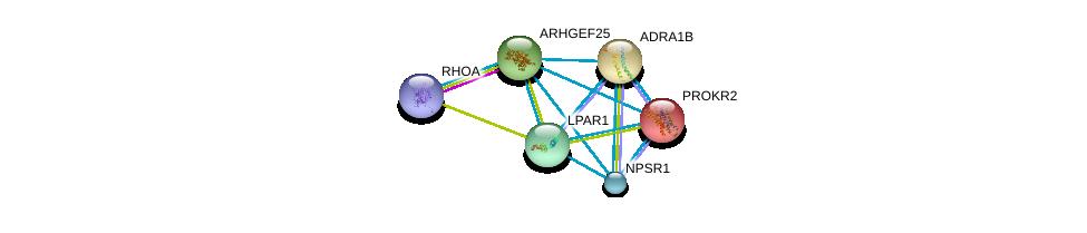 http://string-db.org/version_10/api/image/networkList?limit=0&targetmode=proteins&caller_identity=gene_cards&network_flavor=evidence&identifiers=9606.ENSP00000335560%0d%0a9606.ENSP00000400175%0d%0a9606.ENSP00000352839%0d%0a9606.ENSP00000306662%0d%0a9606.ENSP00000217270%0d%0a9606.ENSP00000351755%0d%0a
