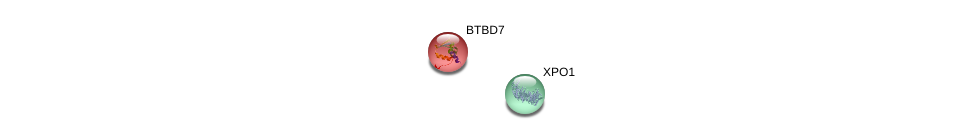 http://string-db.org/version_10/api/image/networkList?limit=0&targetmode=proteins&caller_identity=gene_cards&network_flavor=evidence&identifiers=9606.ENSP00000335615%0d%0a9606.ENSP00000384863%0d%0a