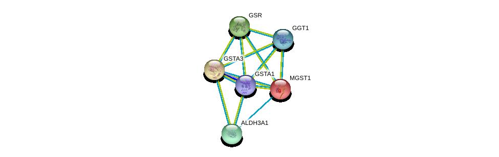 http://string-db.org/version_10/api/image/networkList?limit=0&targetmode=proteins&caller_identity=gene_cards&network_flavor=evidence&identifiers=9606.ENSP00000335620%0d%0a9606.ENSP00000010404%0d%0a9606.ENSP00000211122%0d%0a9606.ENSP00000221130%0d%0a9606.ENSP00000225740%0d%0a9606.ENSP00000248923%0d%0a