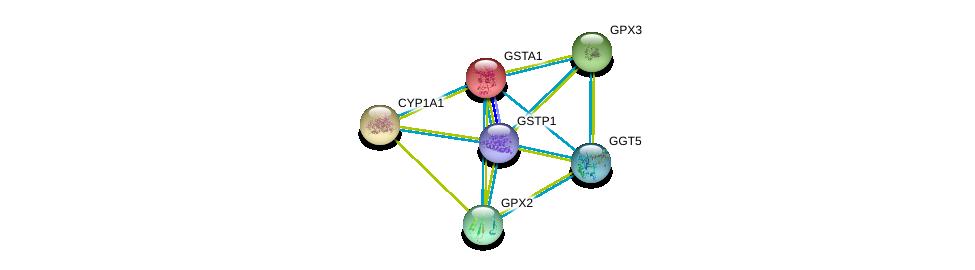 http://string-db.org/version_10/api/image/networkList?limit=0&targetmode=proteins&caller_identity=gene_cards&network_flavor=evidence&identifiers=9606.ENSP00000335620%0d%0a9606.ENSP00000369050%0d%0a9606.ENSP00000373477%0d%0a9606.ENSP00000374265%0d%0a9606.ENSP00000381340%0d%0a9606.ENSP00000381607%0d%0a