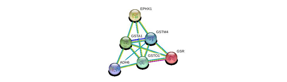 http://string-db.org/version_10/api/image/networkList?limit=0&targetmode=proteins&caller_identity=gene_cards&network_flavor=evidence&identifiers=9606.ENSP00000335620%0d%0a9606.ENSP00000378359%0d%0a9606.ENSP00000221130%0d%0a9606.ENSP00000358851%0d%0a9606.ENSP00000358727%0d%0a9606.ENSP00000272167%0d%0a