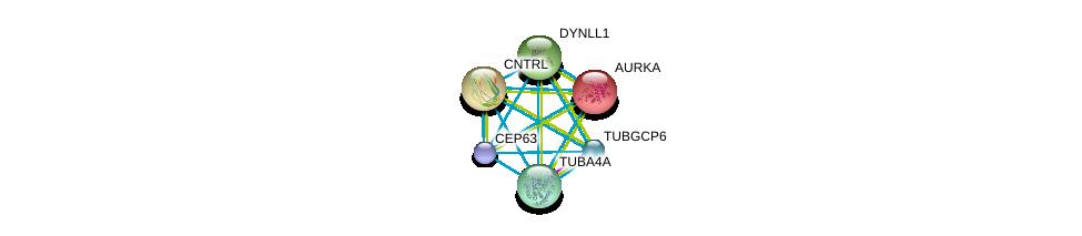 http://string-db.org/version_10/api/image/networkList?limit=0&targetmode=proteins&caller_identity=gene_cards&network_flavor=evidence&identifiers=9606.ENSP00000336524%0d%0a9606.ENSP00000216911%0d%0a9606.ENSP00000238341%0d%0a9606.ENSP00000242577%0d%0a9606.ENSP00000248437%0d%0a9606.ENSP00000248846%0d%0a