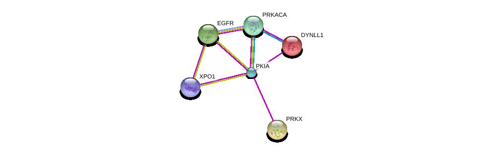 http://string-db.org/version_10/api/image/networkList?limit=0&targetmode=proteins&caller_identity=gene_cards&network_flavor=evidence&identifiers=9606.ENSP00000336552%0d%0a9606.ENSP00000309591%0d%0a9606.ENSP00000384863%0d%0a9606.ENSP00000242577%0d%0a9606.ENSP00000262848%0d%0a9606.ENSP00000275493%0d%0a