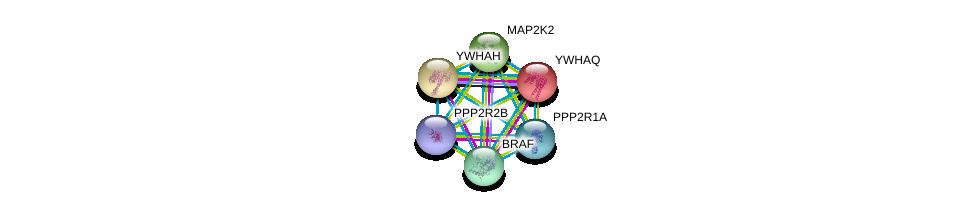 http://string-db.org/version_10/api/image/networkList?limit=0&targetmode=proteins&caller_identity=gene_cards&network_flavor=evidence&identifiers=9606.ENSP00000336591%0d%0a9606.ENSP00000324804%0d%0a9606.ENSP00000238081%0d%0a9606.ENSP00000248975%0d%0a9606.ENSP00000262948%0d%0a9606.ENSP00000288602%0d%0a
