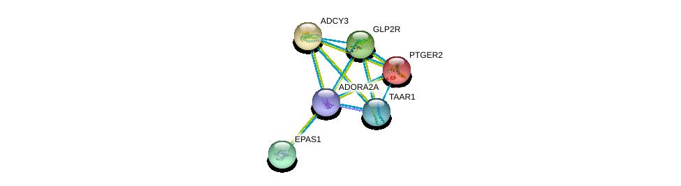 http://string-db.org/version_10/api/image/networkList?limit=0&targetmode=proteins&caller_identity=gene_cards&network_flavor=evidence&identifiers=9606.ENSP00000336630%0d%0a9606.ENSP00000245457%0d%0a9606.ENSP00000260600%0d%0a9606.ENSP00000262441%0d%0a9606.ENSP00000263734%0d%0a9606.ENSP00000275216%0d%0a