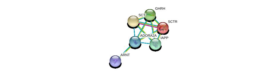 http://string-db.org/version_10/api/image/networkList?limit=0&targetmode=proteins&caller_identity=gene_cards&network_flavor=evidence&identifiers=9606.ENSP00000336630%0d%0a9606.ENSP00000351407%0d%0a9606.ENSP00000019103%0d%0a9606.ENSP00000176195%0d%0a9606.ENSP00000237527%0d%0a9606.ENSP00000240652%0d%0a