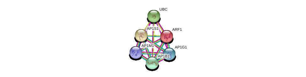 http://string-db.org/version_10/api/image/networkList?limit=0&targetmode=proteins&caller_identity=gene_cards&network_flavor=evidence&identifiers=9606.ENSP00000336666%0d%0a9606.ENSP00000350199%0d%0a9606.ENSP00000377148%0d%0a9606.ENSP00000388996%0d%0a9606.ENSP00000344818%0d%0a9606.ENSP00000272102%0d%0a