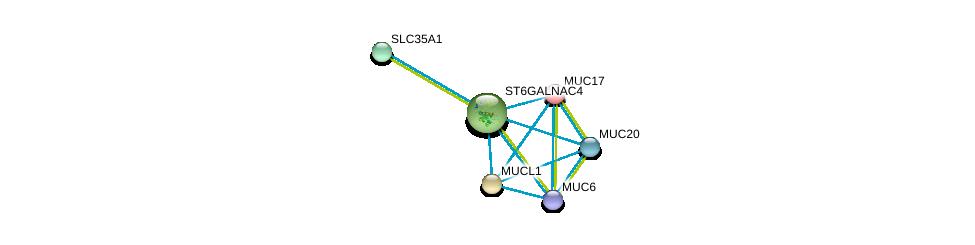 http://string-db.org/version_10/api/image/networkList?limit=0&targetmode=proteins&caller_identity=gene_cards&network_flavor=evidence&identifiers=9606.ENSP00000336733%0d%0a9606.ENSP00000358565%0d%0a9606.ENSP00000406861%0d%0a9606.ENSP00000302716%0d%0a9606.ENSP00000311364%0d%0a9606.ENSP00000396774%0d%0a