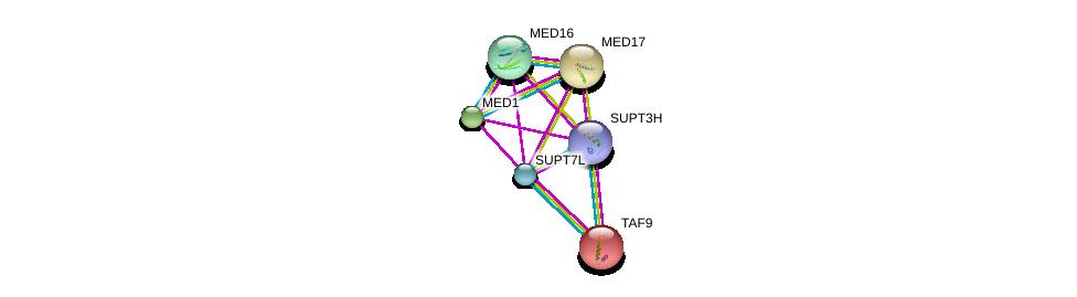 http://string-db.org/version_10/api/image/networkList?limit=0&targetmode=proteins&caller_identity=gene_cards&network_flavor=evidence&identifiers=9606.ENSP00000336750%0d%0a9606.ENSP00000251871%0d%0a9606.ENSP00000300651%0d%0a9606.ENSP00000325612%0d%0a9606.ENSP00000217893%0d%0a9606.ENSP00000360515%0d%0a
