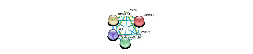 http://string-db.org/version_10/api/image/networkList?limit=0&targetmode=proteins&caller_identity=gene_cards&network_flavor=evidence&identifiers=9606.ENSP00000336764%0d%0a9606.ENSP00000301908%0d%0a9606.ENSP00000014930%0d%0a9606.ENSP00000216629%0d%0a9606.ENSP00000217305%0d%0a9606.ENSP00000226317%0d%0a