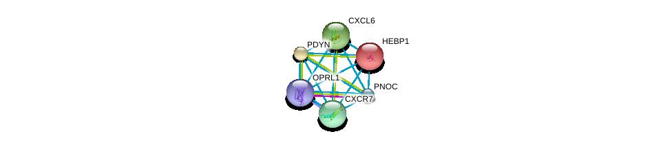 http://string-db.org/version_10/api/image/networkList?limit=0&targetmode=proteins&caller_identity=gene_cards&network_flavor=evidence&identifiers=9606.ENSP00000336764%0d%0a9606.ENSP00000301908%0d%0a9606.ENSP00000272928%0d%0a9606.ENSP00000014930%0d%0a9606.ENSP00000217305%0d%0a9606.ENSP00000226317%0d%0a