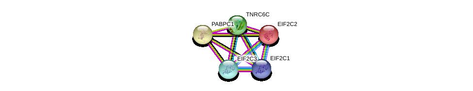 http://string-db.org/version_10/api/image/networkList?limit=0&targetmode=proteins&caller_identity=gene_cards&network_flavor=evidence&identifiers=9606.ENSP00000336783%0d%0a9606.ENSP00000313007%0d%0a9606.ENSP00000313007%0d%0a9606.ENSP00000220592%0d%0a9606.ENSP00000362287%0d%0a9606.ENSP00000362300%0d%0a