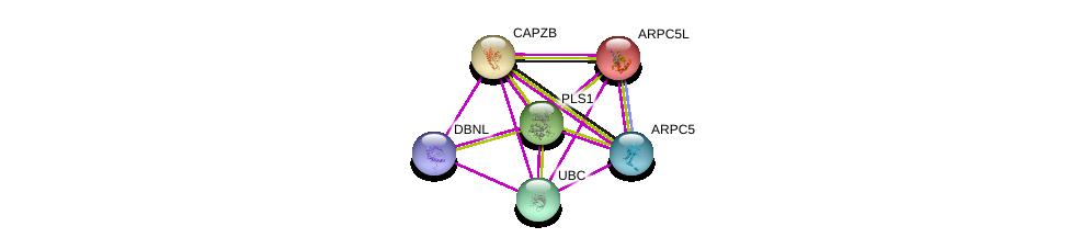 http://string-db.org/version_10/api/image/networkList?limit=0&targetmode=proteins&caller_identity=gene_cards&network_flavor=evidence&identifiers=9606.ENSP00000336831%0d%0a9606.ENSP00000344818%0d%0a9606.ENSP00000264202%0d%0a9606.ENSP00000417653%0d%0a9606.ENSP00000352918%0d%0a9606.ENSP00000259477%0d%0a