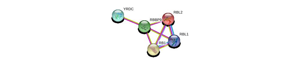 http://string-db.org/version_10/api/image/networkList?limit=0&targetmode=proteins&caller_identity=gene_cards&network_flavor=evidence&identifiers=9606.ENSP00000336866%0d%0a9606.ENSP00000262133%0d%0a9606.ENSP00000362768%0d%0a9606.ENSP00000267163%0d%0a9606.ENSP00000362135%0d%0a