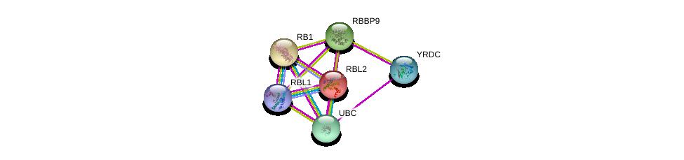 http://string-db.org/version_10/api/image/networkList?limit=0&targetmode=proteins&caller_identity=gene_cards&network_flavor=evidence&identifiers=9606.ENSP00000336866%0d%0a9606.ENSP00000267163%0d%0a9606.ENSP00000362768%0d%0a9606.ENSP00000362135%0d%0a9606.ENSP00000262133%0d%0a9606.ENSP00000344818%0d%0a