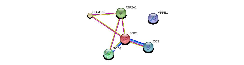 http://string-db.org/version_10/api/image/networkList?limit=0&targetmode=proteins&caller_identity=gene_cards&network_flavor=evidence&identifiers=9606.ENSP00000336887%0d%0a9606.ENSP00000270142%0d%0a9606.ENSP00000371554%0d%0a9606.ENSP00000436318%0d%0a9606.ENSP00000465894%0d%0a9606.ENSP00000349595%0d%0a
