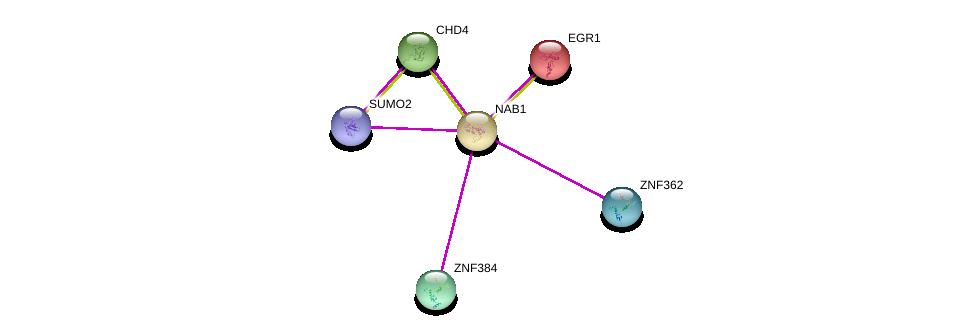 http://string-db.org/version_10/api/image/networkList?limit=0&targetmode=proteins&caller_identity=gene_cards&network_flavor=evidence&identifiers=9606.ENSP00000336894%0d%0a9606.ENSP00000405965%0d%0a9606.ENSP00000239938%0d%0a9606.ENSP00000349508%0d%0a9606.ENSP00000362527%0d%0a9606.ENSP00000354592%0d%0a