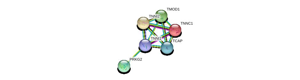 http://string-db.org/version_10/api/image/networkList?limit=0&targetmode=proteins&caller_identity=gene_cards&network_flavor=evidence&identifiers=9606.ENSP00000337022%0d%0a9606.ENSP00000232975%0d%0a9606.ENSP00000252898%0d%0a9606.ENSP00000259365%0d%0a9606.ENSP00000264399%0d%0a9606.ENSP00000312624%0d%0a