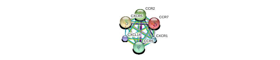 http://string-db.org/version_10/api/image/networkList?limit=0&targetmode=proteins&caller_identity=gene_cards&network_flavor=evidence&identifiers=9606.ENSP00000337065%0d%0a9606.ENSP00000246657%0d%0a9606.ENSP00000292174%0d%0a9606.ENSP00000292301%0d%0a9606.ENSP00000292303%0d%0a9606.ENSP00000295683%0d%0a