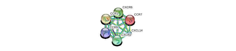 http://string-db.org/version_10/api/image/networkList?limit=0&targetmode=proteins&caller_identity=gene_cards&network_flavor=evidence&identifiers=9606.ENSP00000337065%0d%0a9606.ENSP00000350256%0d%0a9606.ENSP00000304414%0d%0a9606.ENSP00000296140%0d%0a9606.ENSP00000246657%0d%0a9606.ENSP00000319635%0d%0a