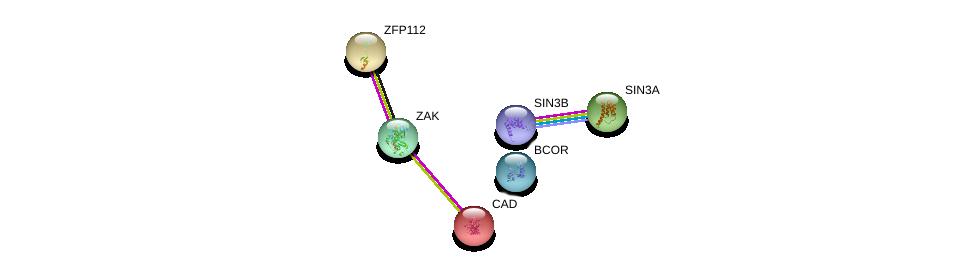 http://string-db.org/version_10/api/image/networkList?limit=0&targetmode=proteins&caller_identity=gene_cards&network_flavor=evidence&identifiers=9606.ENSP00000337081%0d%0a9606.ENSP00000364361%0d%0a9606.ENSP00000369131%0d%0a9606.ENSP00000353622%0d%0a9606.ENSP00000367705%0d%0a9606.ENSP00000264705%0d%0a