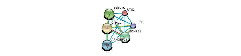 http://string-db.org/version_10/api/image/networkList?limit=0&targetmode=proteins&caller_identity=gene_cards&network_flavor=evidence&identifiers=9606.ENSP00000337128%0d%0a9606.ENSP00000335560%0d%0a9606.ENSP00000054668%0d%0a9606.ENSP00000078429%0d%0a9606.ENSP00000171757%0d%0a9606.ENSP00000216629%0d%0a
