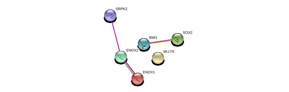 http://string-db.org/version_10/api/image/networkList?limit=0&targetmode=proteins&caller_identity=gene_cards&network_flavor=evidence&identifiers=9606.ENSP00000337146%0d%0a9606.ENSP00000261488%0d%0a9606.ENSP00000377262%0d%0a9606.ENSP00000365851%0d%0a9606.ENSP00000323588%0d%0a9606.ENSP00000316426%0d%0a