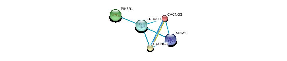 http://string-db.org/version_10/api/image/networkList?limit=0&targetmode=proteins&caller_identity=gene_cards&network_flavor=evidence&identifiers=9606.ENSP00000337168%0d%0a9606.ENSP00000005284%0d%0a9606.ENSP00000270458%0d%0a9606.ENSP00000270458%0d%0a9606.ENSP00000417281%0d%0a9606.ENSP00000274335%0d%0a