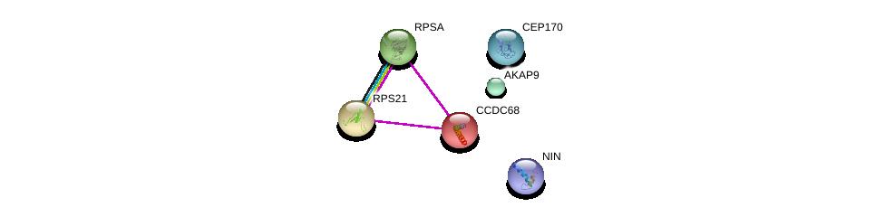 http://string-db.org/version_10/api/image/networkList?limit=0&targetmode=proteins&caller_identity=gene_cards&network_flavor=evidence&identifiers=9606.ENSP00000337209%0d%0a9606.ENSP00000348573%0d%0a9606.ENSP00000371472%0d%0a9606.ENSP00000355500%0d%0a9606.ENSP00000346067%0d%0a9606.ENSP00000345957%0d%0a