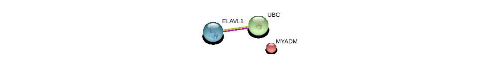 http://string-db.org/version_10/api/image/networkList?limit=0&targetmode=proteins&caller_identity=gene_cards&network_flavor=evidence&identifiers=9606.ENSP00000337222%0d%0a9606.ENSP00000385269%0d%0a9606.ENSP00000344818%0d%0a