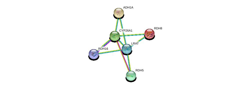 http://string-db.org/version_10/api/image/networkList?limit=0&targetmode=proteins&caller_identity=gene_cards&network_flavor=evidence&identifiers=9606.ENSP00000337224%0d%0a9606.ENSP00000257895%0d%0a9606.ENSP00000381206%0d%0a9606.ENSP00000171214%0d%0a9606.ENSP00000209668%0d%0a9606.ENSP00000224356%0d%0a