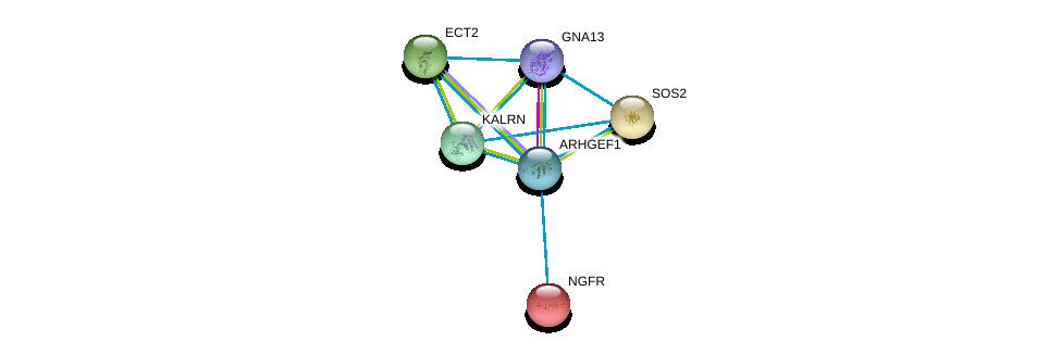 http://string-db.org/version_10/api/image/networkList?limit=0&targetmode=proteins&caller_identity=gene_cards&network_flavor=evidence&identifiers=9606.ENSP00000337261%0d%0a9606.ENSP00000400717%0d%0a9606.ENSP00000172229%0d%0a9606.ENSP00000216373%0d%0a9606.ENSP00000232458%0d%0a9606.ENSP00000240874%0d%0a