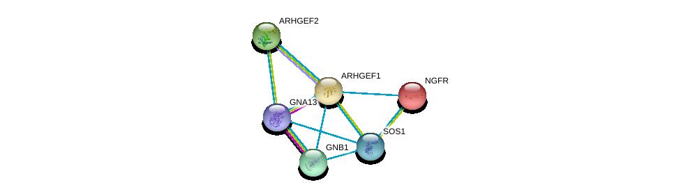 http://string-db.org/version_10/api/image/networkList?limit=0&targetmode=proteins&caller_identity=gene_cards&network_flavor=evidence&identifiers=9606.ENSP00000337261%0d%0a9606.ENSP00000400717%0d%0a9606.ENSP00000354837%0d%0a9606.ENSP00000384675%0d%0a9606.ENSP00000172229%0d%0a9606.ENSP00000367869%0d%0a