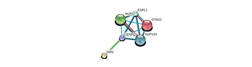 http://string-db.org/version_10/api/image/networkList?limit=0&targetmode=proteins&caller_identity=gene_cards&network_flavor=evidence&identifiers=9606.ENSP00000337289%0d%0a9606.ENSP00000218089%0d%0a9606.ENSP00000220514%0d%0a9606.ENSP00000251074%0d%0a9606.ENSP00000257934%0d%0a9606.ENSP00000261396%0d%0a