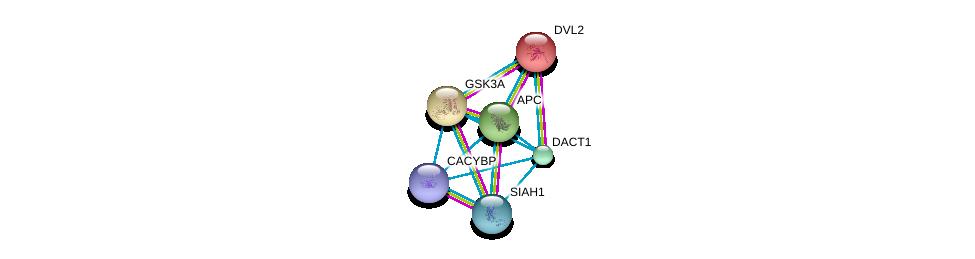 http://string-db.org/version_10/api/image/networkList?limit=0&targetmode=proteins&caller_identity=gene_cards&network_flavor=evidence&identifiers=9606.ENSP00000337439%0d%0a9606.ENSP00000356652%0d%0a9606.ENSP00000349156%0d%0a9606.ENSP00000257430%0d%0a9606.ENSP00000222330%0d%0a9606.ENSP00000005340%0d%0a