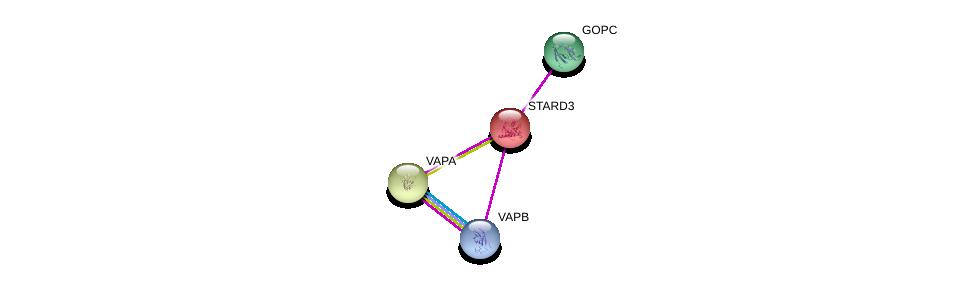 http://string-db.org/version_10/api/image/networkList?limit=0&targetmode=proteins&caller_identity=gene_cards&network_flavor=evidence&identifiers=9606.ENSP00000337446%0d%0a9606.ENSP00000417175%0d%0a9606.ENSP00000345656%0d%0a9606.ENSP00000357484%0d%0a