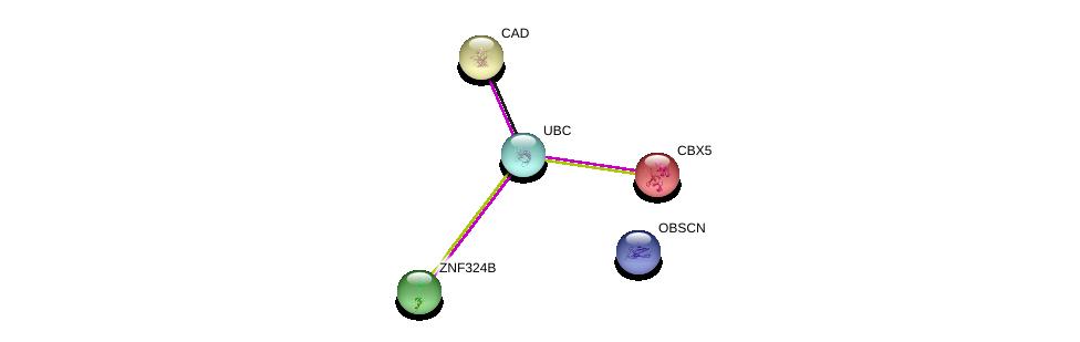 http://string-db.org/version_10/api/image/networkList?limit=0&targetmode=proteins&caller_identity=gene_cards&network_flavor=evidence&identifiers=9606.ENSP00000337473%0d%0a9606.ENSP00000344818%0d%0a9606.ENSP00000209875%0d%0a9606.ENSP00000209875%0d%0a9606.ENSP00000264705%0d%0a9606.ENSP00000455507%0d%0a