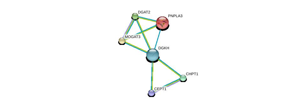 http://string-db.org/version_10/api/image/networkList?limit=0&targetmode=proteins&caller_identity=gene_cards&network_flavor=evidence&identifiers=9606.ENSP00000337572%0d%0a9606.ENSP00000349696%0d%0a9606.ENSP00000216180%0d%0a9606.ENSP00000223114%0d%0a9606.ENSP00000228027%0d%0a9606.ENSP00000229266%0d%0a
