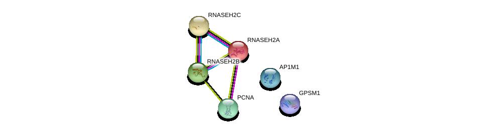 http://string-db.org/version_10/api/image/networkList?limit=0&targetmode=proteins&caller_identity=gene_cards&network_flavor=evidence&identifiers=9606.ENSP00000337623%0d%0a9606.ENSP00000368438%0d%0a9606.ENSP00000308193%0d%0a9606.ENSP00000388996%0d%0a9606.ENSP00000221486%0d%0a9606.ENSP00000392828%0d%0a