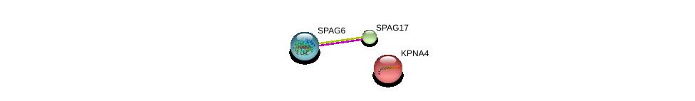 http://string-db.org/version_10/api/image/networkList?limit=0&targetmode=proteins&caller_identity=gene_cards&network_flavor=evidence&identifiers=9606.ENSP00000337804%0d%0a9606.ENSP00000365811%0d%0a9606.ENSP00000334373%0d%0a