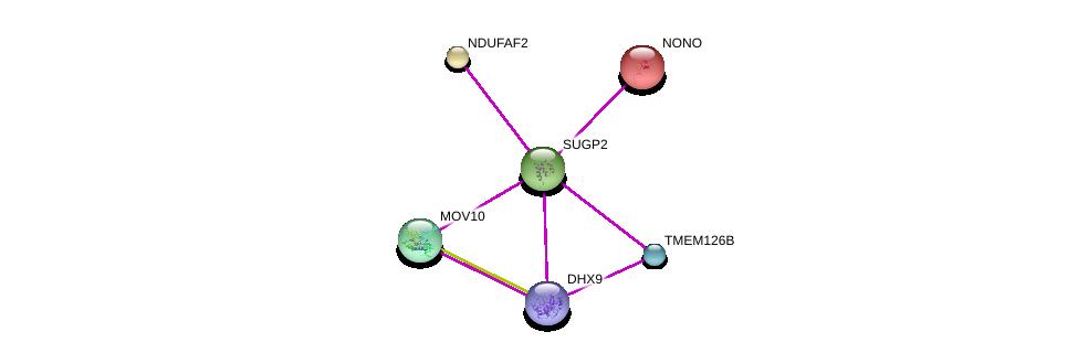 http://string-db.org/version_10/api/image/networkList?limit=0&targetmode=proteins&caller_identity=gene_cards&network_flavor=evidence&identifiers=9606.ENSP00000337926%0d%0a9606.ENSP00000351737%0d%0a9606.ENSP00000276079%0d%0a9606.ENSP00000296597%0d%0a9606.ENSP00000350028%0d%0a9606.ENSP00000356520%0d%0a
