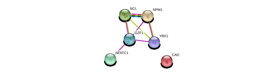 http://string-db.org/version_10/api/image/networkList?limit=0&targetmode=proteins&caller_identity=gene_cards&network_flavor=evidence&identifiers=9606.ENSP00000338290%0d%0a9606.ENSP00000318195%0d%0a9606.ENSP00000296930%0d%0a9606.ENSP00000327850%0d%0a9606.ENSP00000361626%0d%0a9606.ENSP00000264705%0d%0a