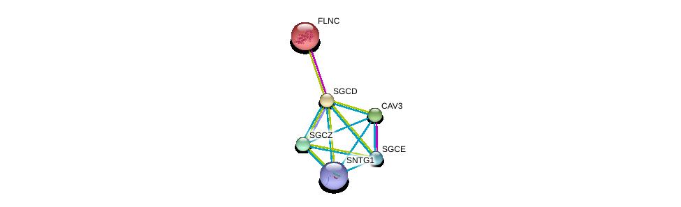 http://string-db.org/version_10/api/image/networkList?limit=0&targetmode=proteins&caller_identity=gene_cards&network_flavor=evidence&identifiers=9606.ENSP00000338343%0d%0a9606.ENSP00000341940%0d%0a9606.ENSP00000398930%0d%0a9606.ENSP00000327145%0d%0a9606.ENSP00000371512%0d%0a9606.ENSP00000429276%0d%0a