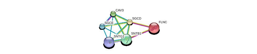 http://string-db.org/version_10/api/image/networkList?limit=0&targetmode=proteins&caller_identity=gene_cards&network_flavor=evidence&identifiers=9606.ENSP00000338343%0d%0a9606.ENSP00000398930%0d%0a9606.ENSP00000341940%0d%0a9606.ENSP00000327145%0d%0a9606.ENSP00000429276%0d%0a9606.ENSP00000378965%0d%0a