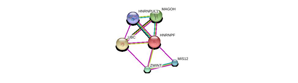 http://string-db.org/version_10/api/image/networkList?limit=0&targetmode=proteins&caller_identity=gene_cards&network_flavor=evidence&identifiers=9606.ENSP00000338477%0d%0a9606.ENSP00000360525%0d%0a9606.ENSP00000344818%0d%0a9606.ENSP00000363055%0d%0a9606.ENSP00000370557%0d%0a9606.ENSP00000375863%0d%0a