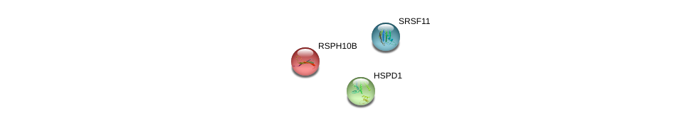 http://string-db.org/version_10/api/image/networkList?limit=0&targetmode=proteins&caller_identity=gene_cards&network_flavor=evidence&identifiers=9606.ENSP00000338556%0d%0a9606.ENSP00000340019%0d%0a9606.ENSP00000359988%0d%0a
