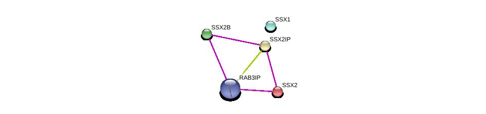 http://string-db.org/version_10/api/image/networkList?limit=0&targetmode=proteins&caller_identity=gene_cards&network_flavor=evidence&identifiers=9606.ENSP00000338796%0d%0a9606.ENSP00000366118%0d%0a9606.ENSP00000364665%0d%0a9606.ENSP00000447300%0d%0a9606.ENSP00000340279%0d%0a