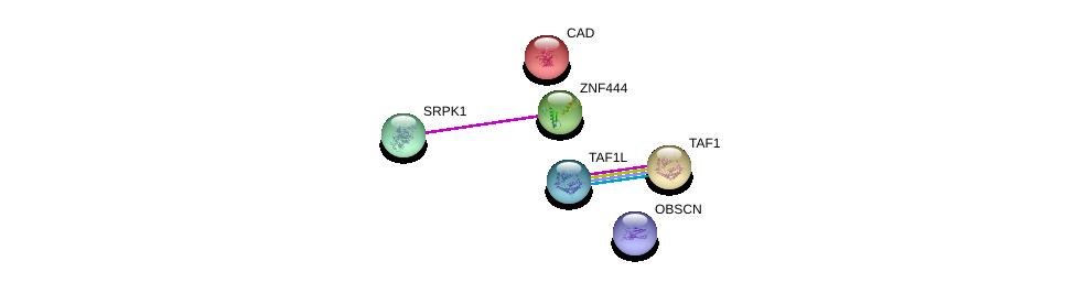 http://string-db.org/version_10/api/image/networkList?limit=0&targetmode=proteins&caller_identity=gene_cards&network_flavor=evidence&identifiers=9606.ENSP00000338860%0d%0a9606.ENSP00000362931%0d%0a9606.ENSP00000264705%0d%0a9606.ENSP00000455507%0d%0a9606.ENSP00000418379%0d%0a9606.ENSP00000276072%0d%0a