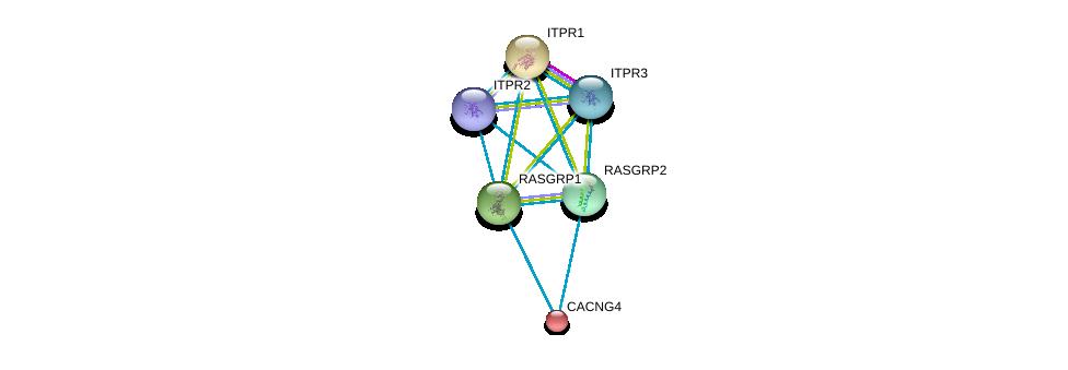 http://string-db.org/version_10/api/image/networkList?limit=0&targetmode=proteins&caller_identity=gene_cards&network_flavor=evidence&identifiers=9606.ENSP00000338864%0d%0a9606.ENSP00000310244%0d%0a9606.ENSP00000306253%0d%0a9606.ENSP00000370744%0d%0a9606.ENSP00000363435%0d%0a9606.ENSP00000262138%0d%0a
